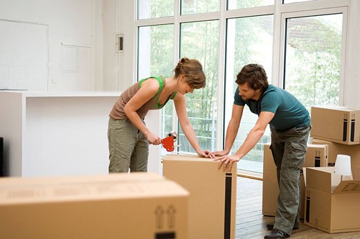 Stock Photo: 1738R-9488 Couple packing cardboard boxes