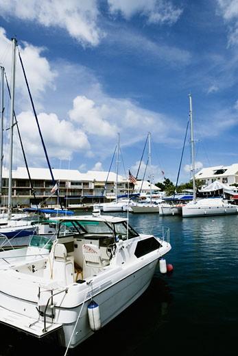 Stock Photo: 1741R-7097 Sailboats moored at a harbor