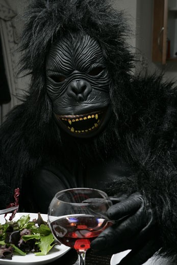 Person dressed up as gorilla eating. : Stock Photo