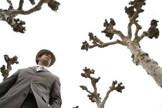 View of a businessman standing beside trees. : Stock Photo