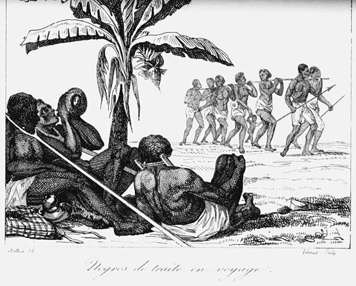Slave convoy on the way to slave boat. Africa. Early 19th century. Copperplate engraving : Stock Photo