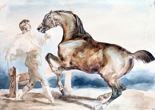 Stock Photo: 1746-2770 Le Dressage, Theodore Gericault, (1791-1824/French), Musee du Louvre, Paris, France