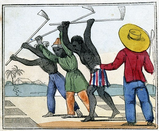 Black slaves working in the cane fields: Holing. Overseer with whip stands over them. West Indies? From Amelia Opie The Black Man's Lament; or How to Make Sugar, London, 1826 : Stock Photo