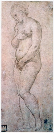 Study of Venus, Raphael, (1483-1520/Italian) : Stock Photo