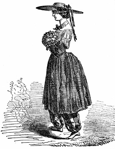 Stock Photo: 1746-387 Amelia Bloomer (1818-1894) American feminist and champion of dress reform. Wood engraving, London, 1869