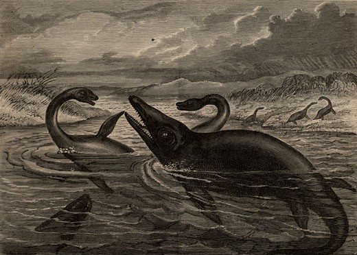 Artist's reconstruction of a Pleisiosaurus and an Ichthyosaurus, From Science for All by Robert Brown (London, c1880), Engraving : Stock Photo
