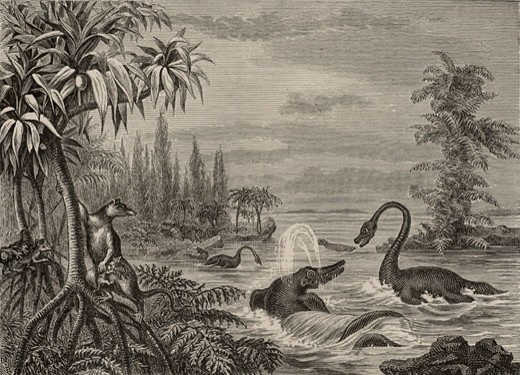 Stock Photo: 1746-877 Scene during the Lower Oolite period showing reconstructions of Ichthyosaurus, Plesiosaurus and a Marsupial, From The Popular Encyclopaedia (London, 1888), Engraving