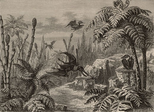 Scene during the Lias period, showing Pterodactyls, a dragonfly, Equisetums, and Tree Ferns, From The Popular Encyclopaedia (London, 1888), Engraving : Stock Photo