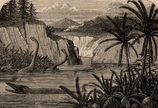 Ideal flora and fauna of the Liassic period including Ichthyosaurus and Plesiosaurus, From The Popular Educator (London, c1855), Engraving : Stock Photo