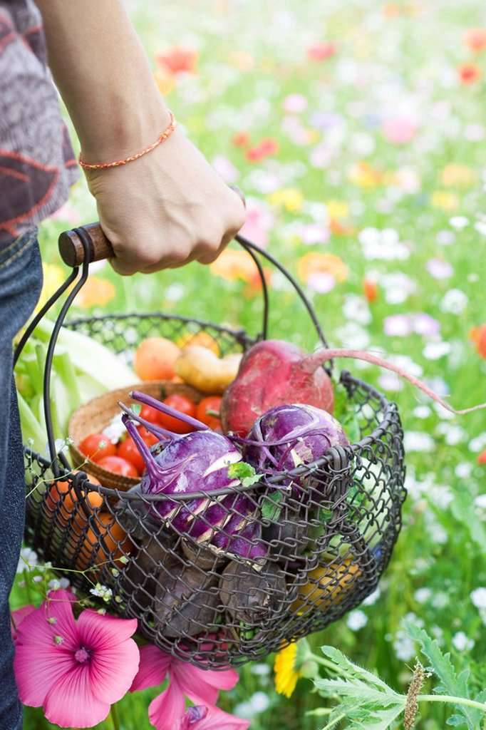 Person standing in field of wildflowers, carrying basket full of fresh produce, cropped view : Stock Photo