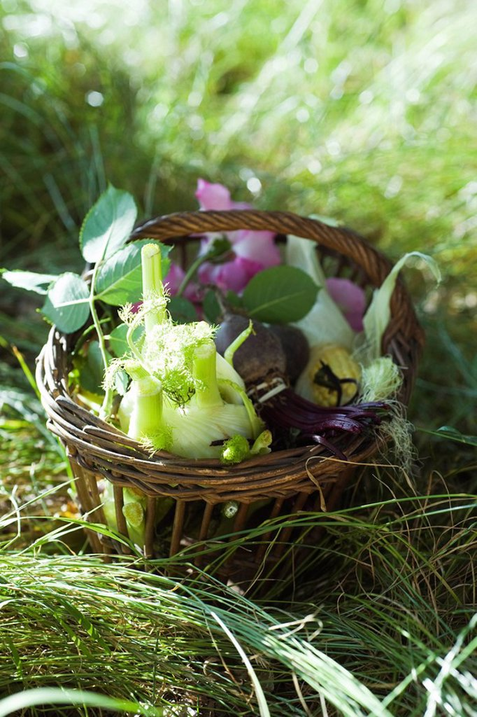 Basket of fresh produce : Stock Photo