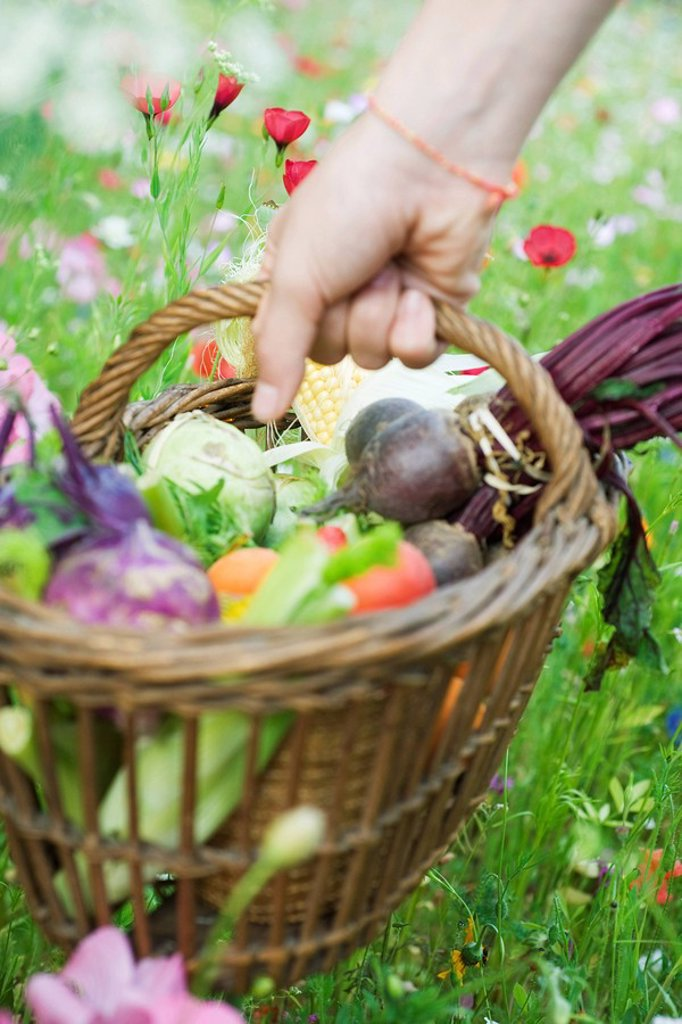 Hand picking up wooden basket of fresh produce : Stock Photo