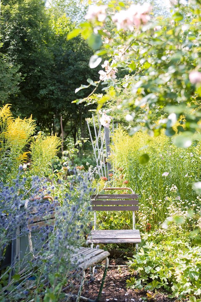 Chairs in flower garden : Stock Photo