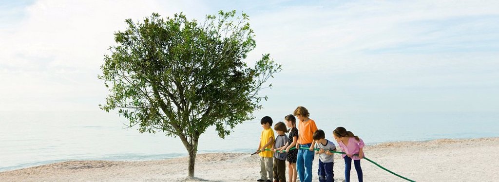Ecology concept, children watering tree together : Stock Photo