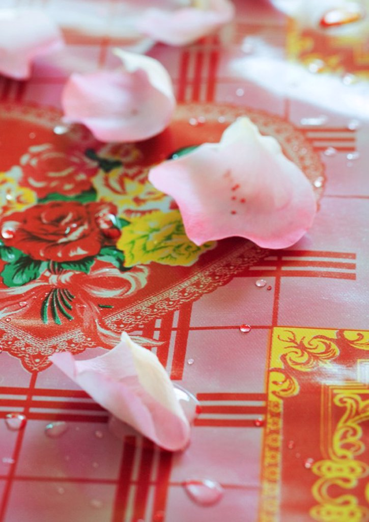 Rose petals on decorative tablecloth : Stock Photo