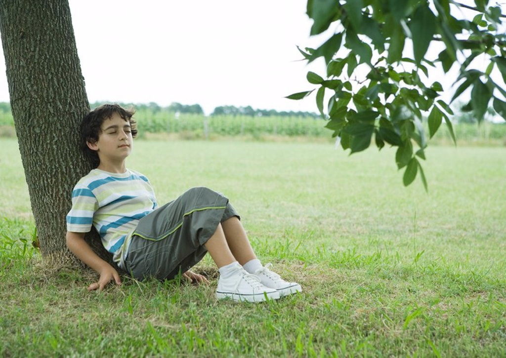 Boy sitting on ground, leaning against tree trunk : Stock Photo