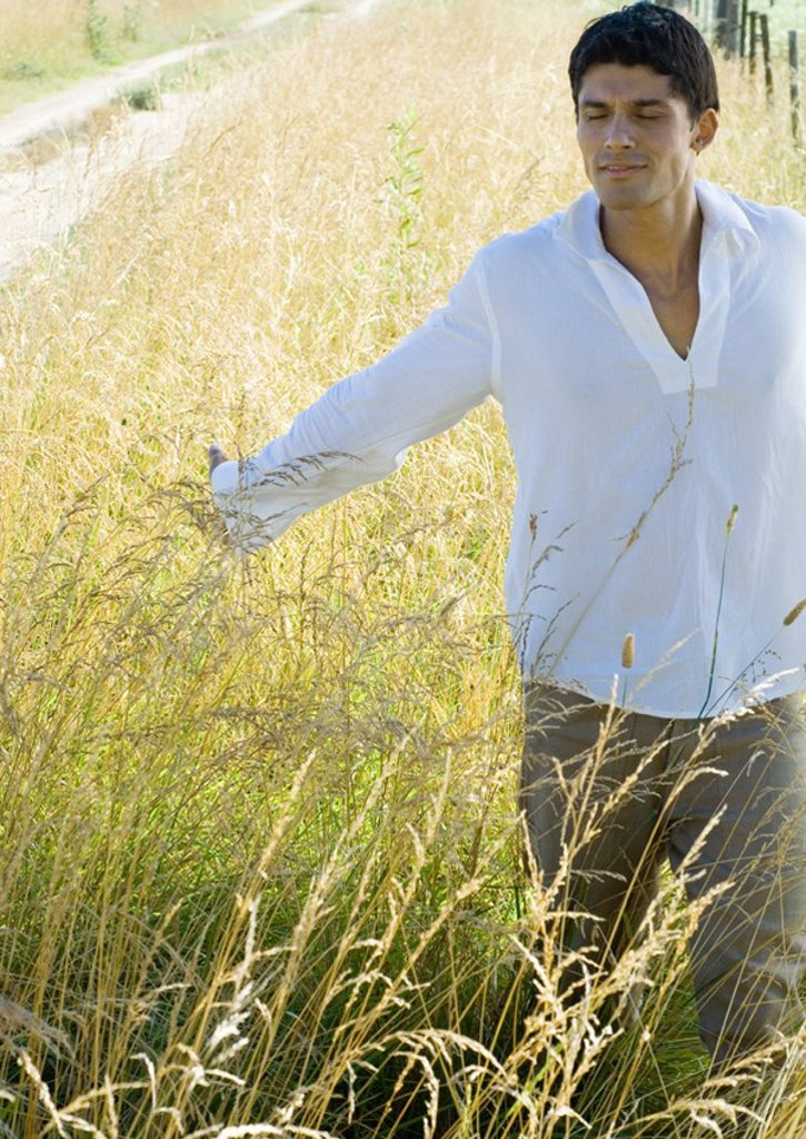 Man walking through field, touching tall weeds, front view : Stock Photo