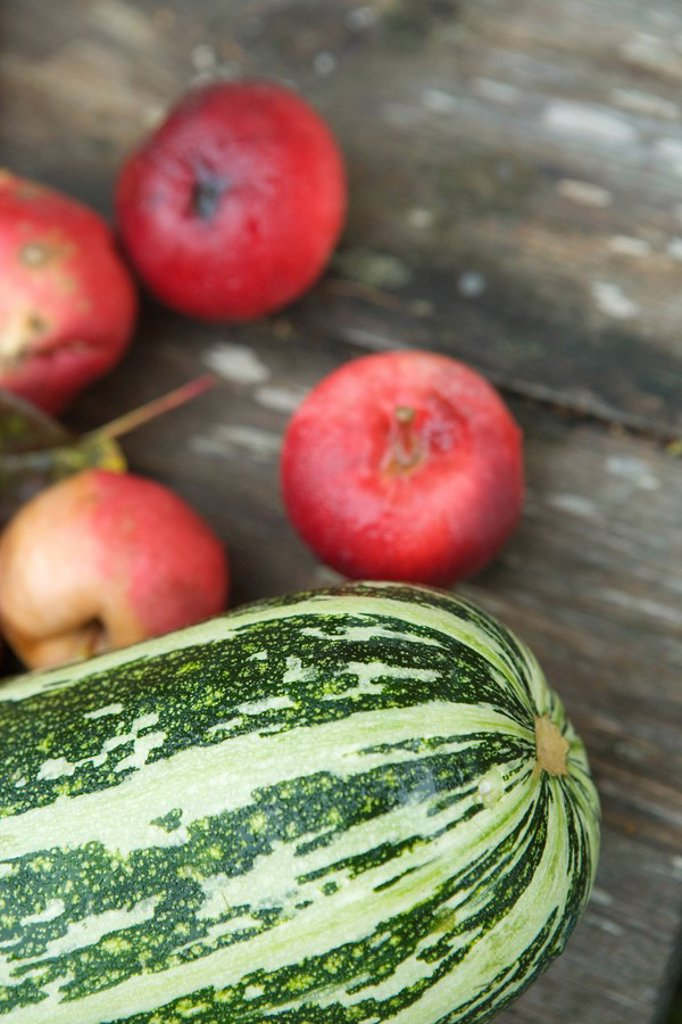 Stock Photo: 1747R-15713 Marrow squash and apples