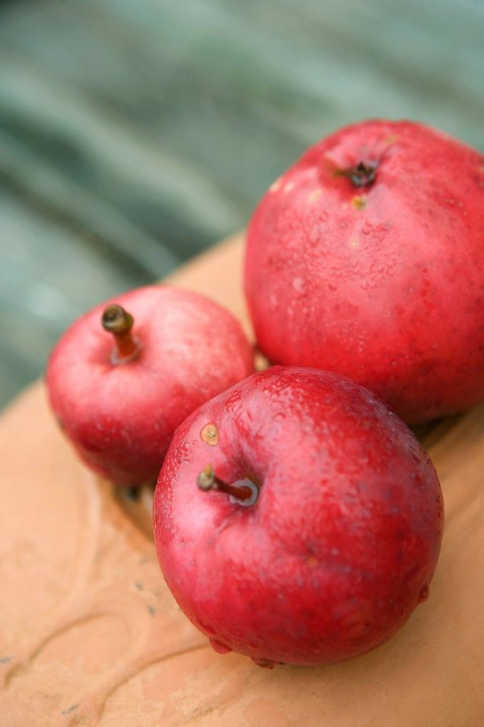 Organic red apples : Stock Photo