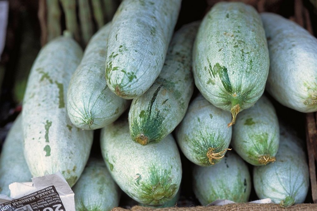 Heap of squash : Stock Photo