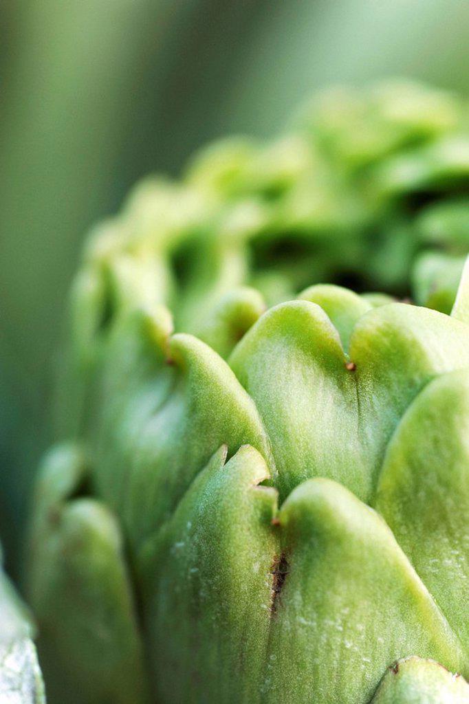 Artichoke, extreme close_up : Stock Photo