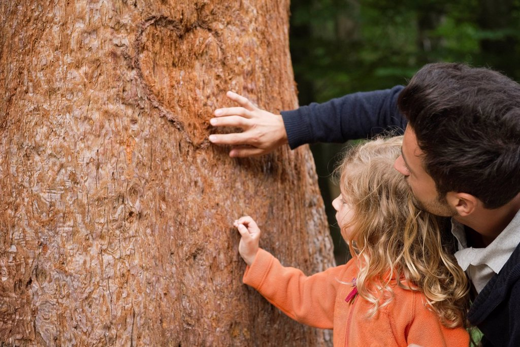 Father and young daughter touching tree trunk : Stock Photo