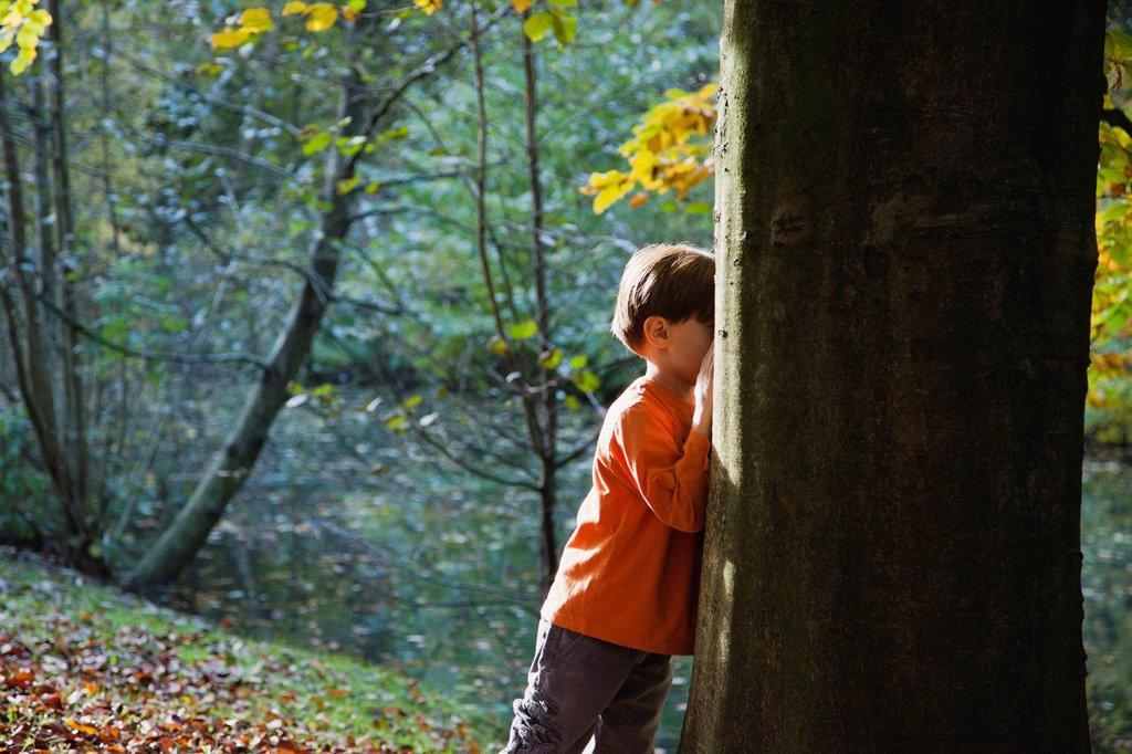 Boy playing hide_and_seek in woods : Stock Photo