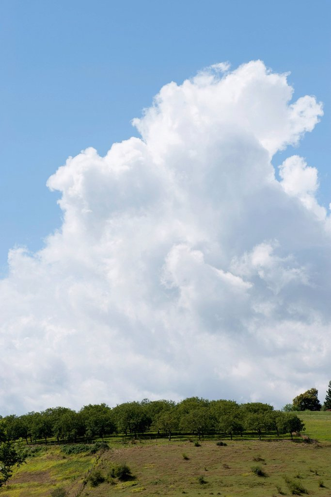 Cumulus clouds over countryside : Stock Photo