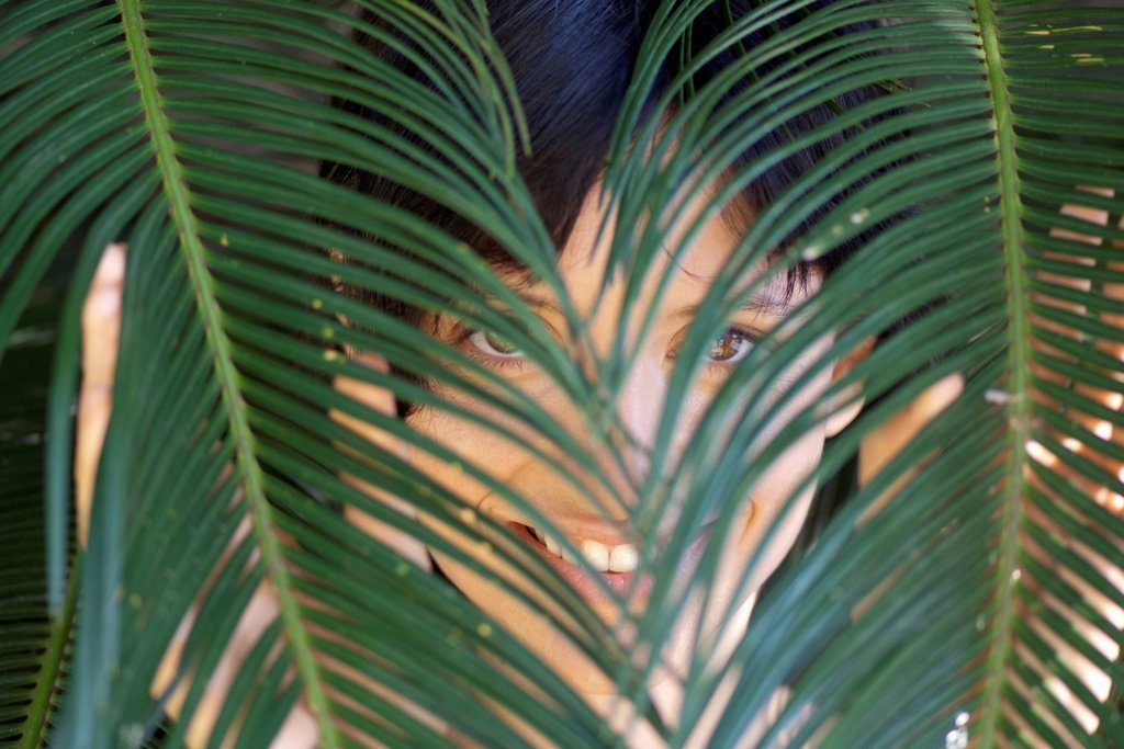 Woman looking through palm leaves : Stock Photo