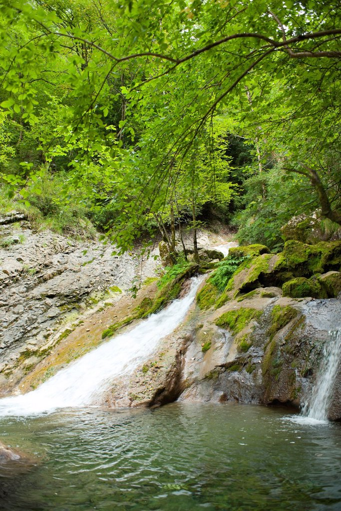 Stock Photo: 1747R-18450 Waterfalls at edge of woods