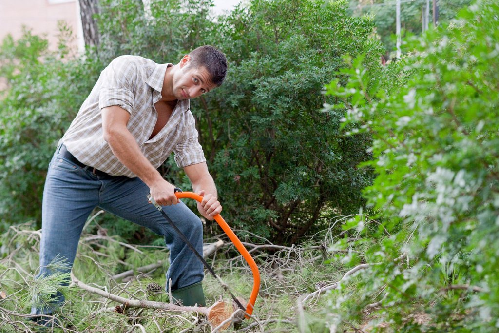 Stock Photo: 1747R-18614 Man sawing tree branch