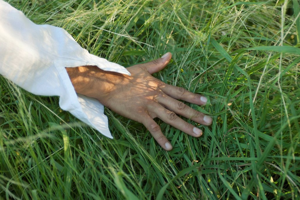 Man´s hand touching grass, cropped : Stock Photo