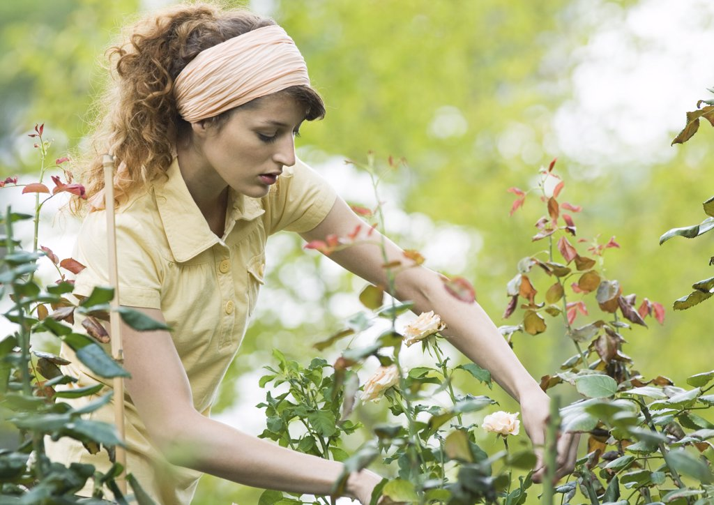 Woman doing yardwork : Stock Photo