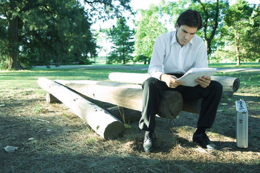 Stock Photo: 1747R-5161 Businessman sitting on logs, reading documents