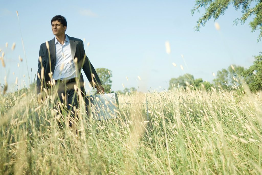 Businessman walking through field : Stock Photo