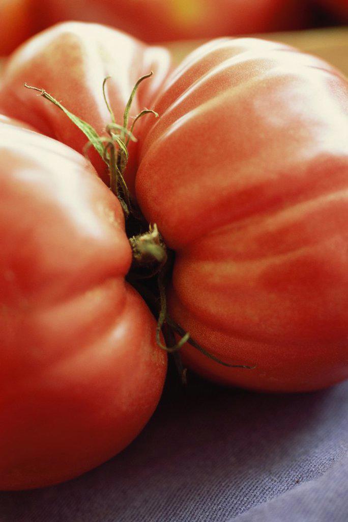 Stock Photo: 1747R-5260 Tomato