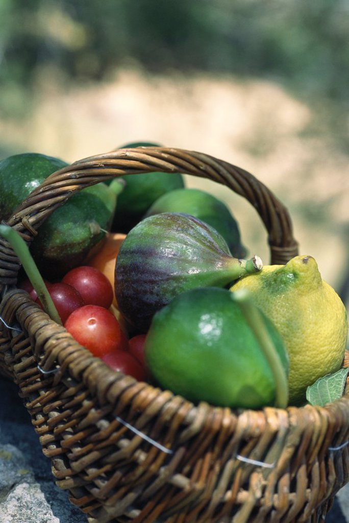 Basket full of fresh produce : Stock Photo
