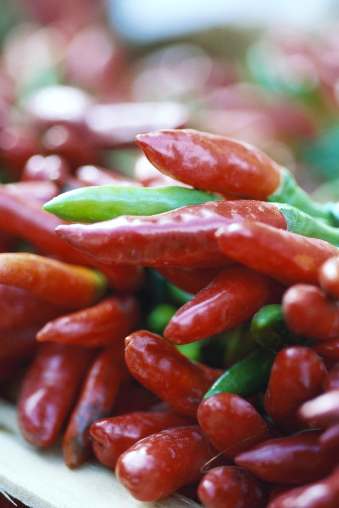 Red peppers : Stock Photo