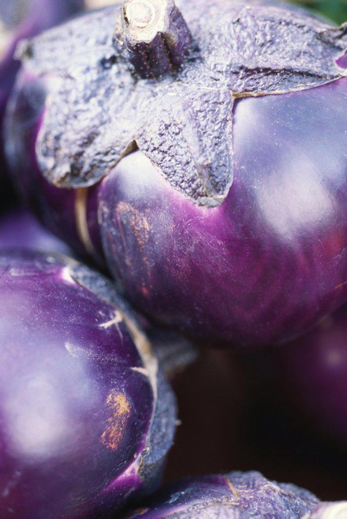 Stock Photo: 1747R-5982 Eggplant