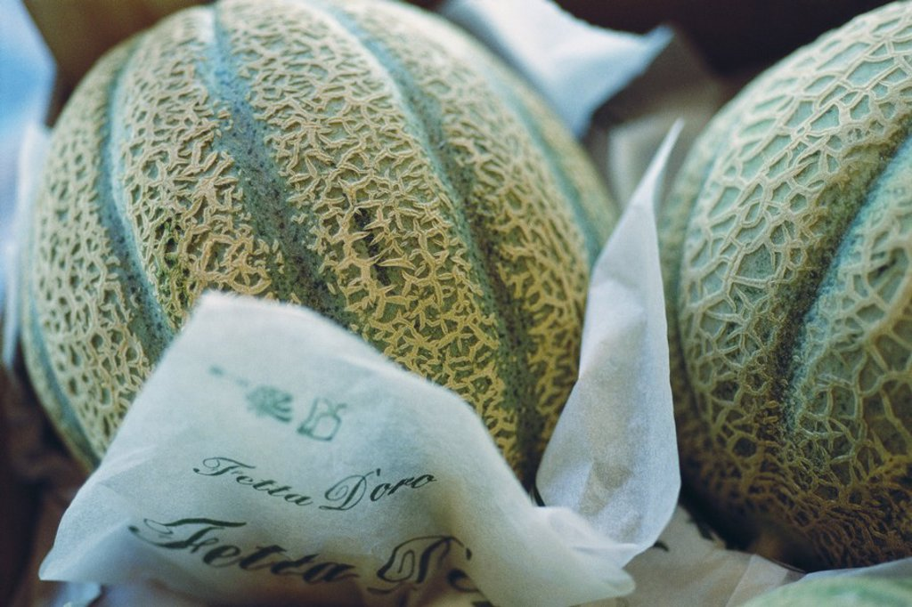 Stock Photo: 1747R-5993 Cantaloupe