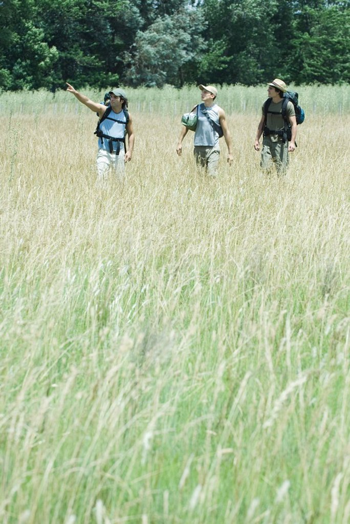 Stock Photo: 1747R-6055 Three hikers walking through field, front view