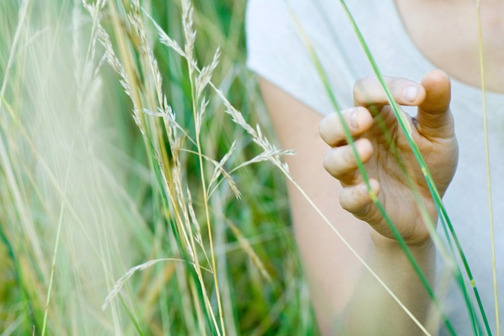 Woman touching tall grass, close-up : Stock Photo