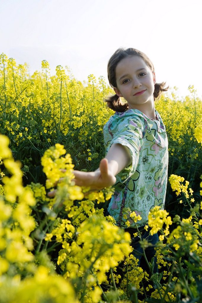 Girl standing in field of canola in bloom, reaching out arm to touch flowers : Stock Photo