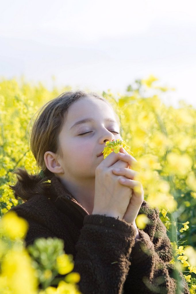 Stock Photo: 1747R-8463 Girl standing in field, bending over, smelling armful of yellow flowers