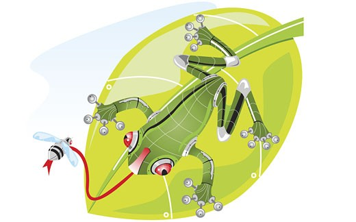Stock Photo: 1758R-1202 Close-up of a robot frog catching a fly