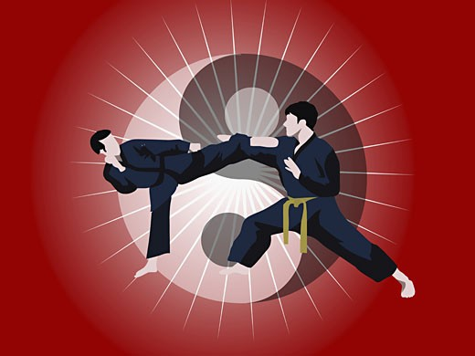 Two men performing martial arts : Stock Photo