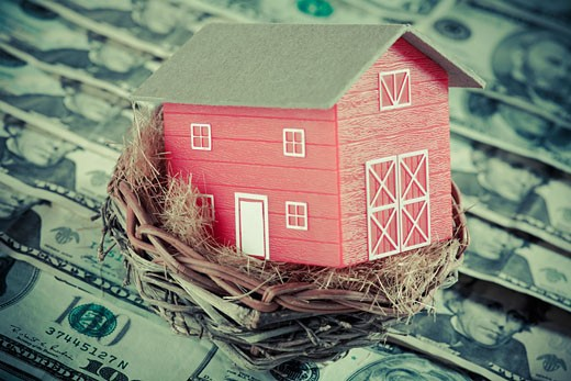 Stock Photo: 1758R-8817 Close-up of a model home in a bird's nest