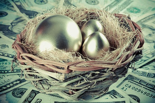 Golden eggs in a bird's nest : Stock Photo
