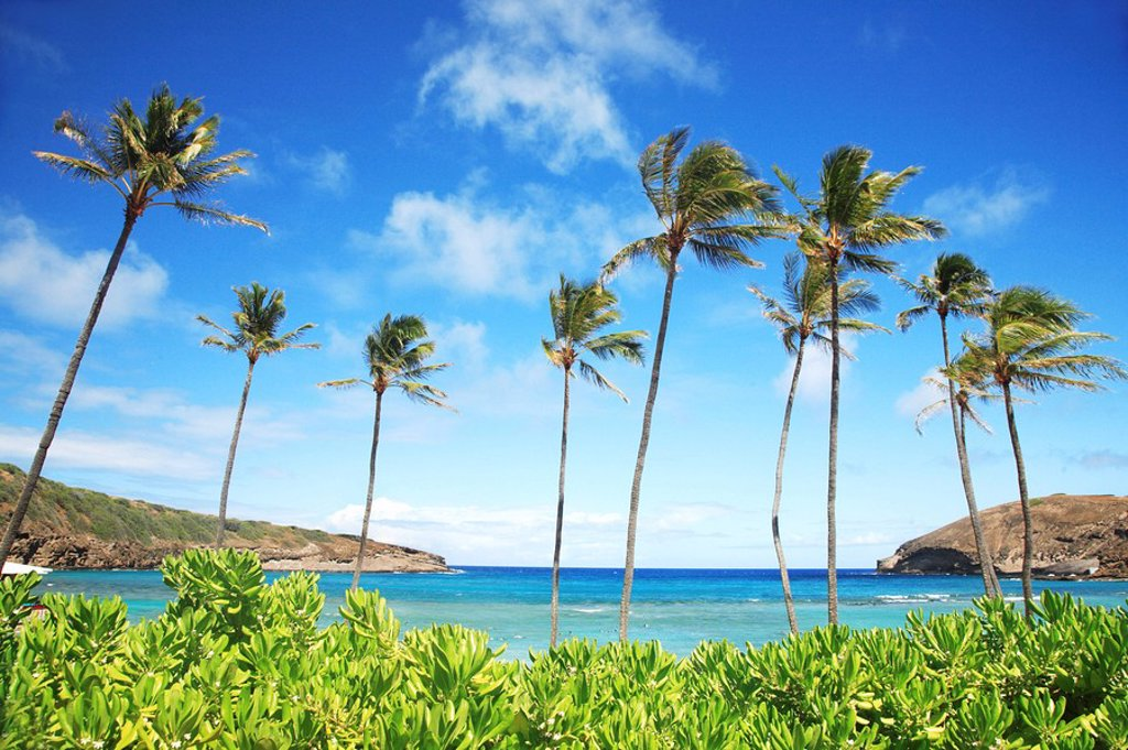 Stock Photo: 1760-12429 Hawaii, Oahu, Hanauma Bay Nature Preserves