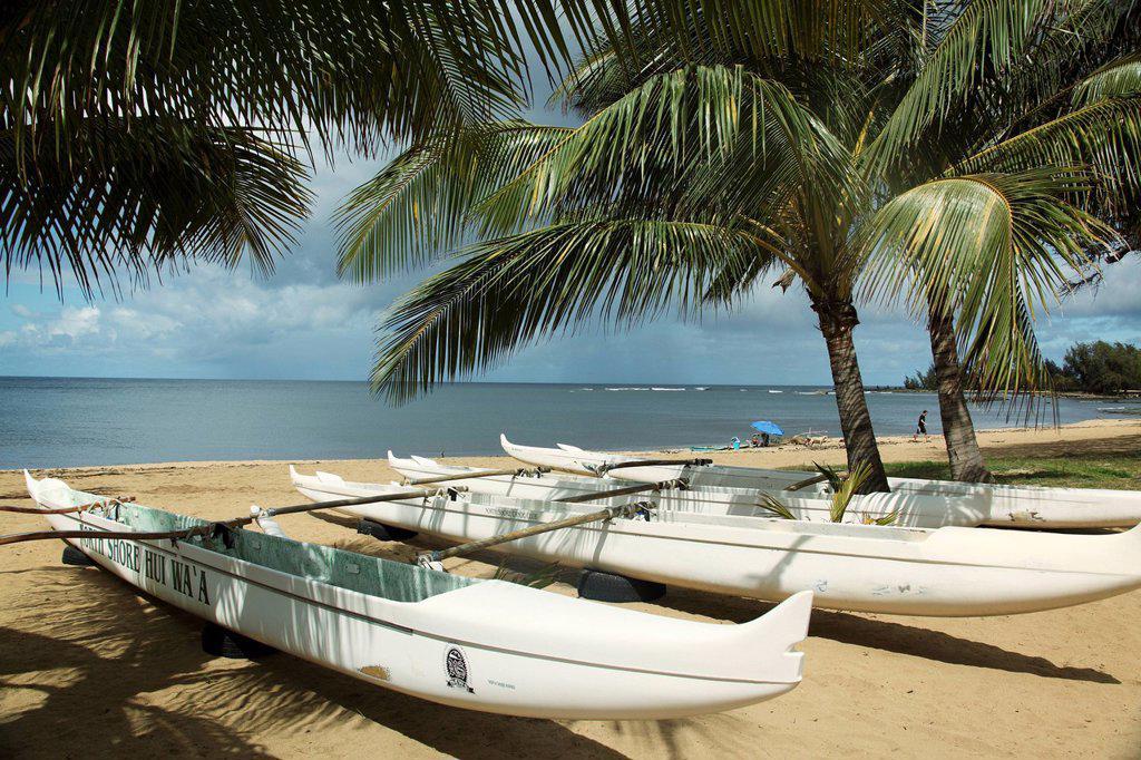 Stock Photo: 1760-13285 Hawaii, Oahu, Haleiwa, row of outrigger canoes on beach.